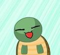turtless avatar