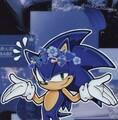 SonictheHedgeh0g avatar