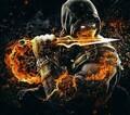 RacketXD avatar