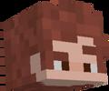 wolupFromMinecraft avatar