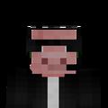 WigglePig avatar