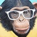 urmumsamonkey avatar