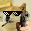 Profilol_ avatar