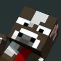 STG4 Minecraft avatar