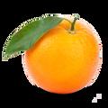oranged_ avatar