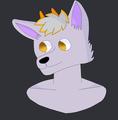 Drack_14 avatar