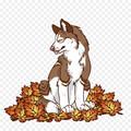 sufuR avatar