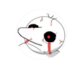 LesterApplewoodRoquefort avatar