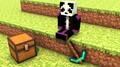 Crazeyyy avatar
