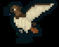 HawkBuilds avatar