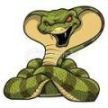 tigram avatar