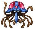 Squids avatar