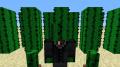 M_Dawg64 avatar