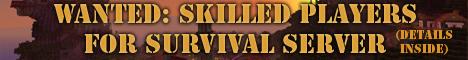Survival-Server looking for builders