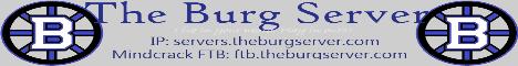 The Burg Server