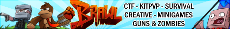 ★ BRAWL ★ CTF - KITPVP - SURVIVAL - CREATIVE - MINIGAMES - GUNS - COD - DAYZ