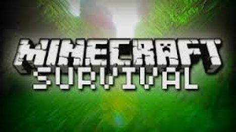 Dale's Survival Server, Need Admins!