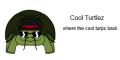Cool Turtlez