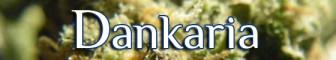 Dankaria