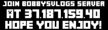 BobbysVlogs Main Server