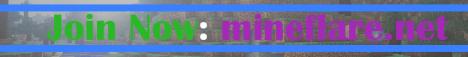 MineFlare Network