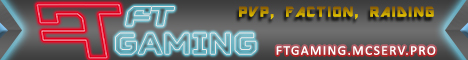FT-Gaming 24/7 server