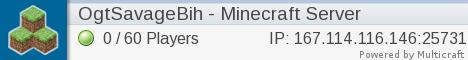 NEW small minecraft server needs help