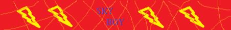 SkyBoy NetWork