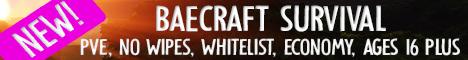 💖 BaeCraft 💖 1.17.1 -  [AGES 16+ ONLY] Semi-Vanilla Survival (Chilled Atmosphere, No World Resets, Whitelist, No Griefing)