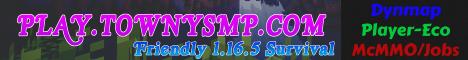 TownySMP [Brand New] [1.16.5 No-Grief]