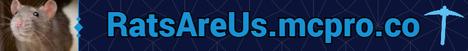 RatsAreUs | Survival Towny | New Server! [1.16.5]