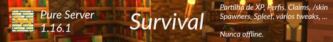 Pure Server (Survival Server)