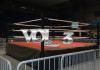 Pro Wrestling Vol. 3