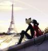 Miraculous Les aventures de Ladybug et Chat Noir