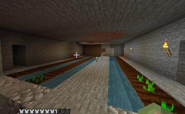 Flixy's Anarchy Minecraft Bedrock Server