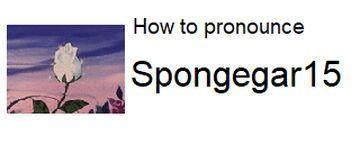 How to pronounce Spongegar15 Minecraft Blog
