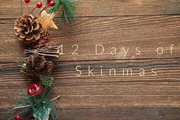 12 Days of Skinmas | Prompt List + Info Minecraft Blog