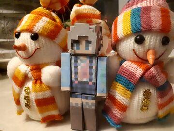 📷 Cara & New Year 🎁 Minecraft Blog