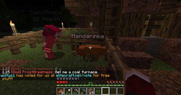 Fox named mandarinka (mandarin) Minecraft Blog