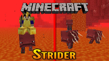 Minecraft 1.16 Nether Strider Showcase Minecraft Blog