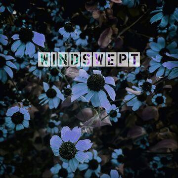 ♪ neveroctober - Windswept ♫ Minecraft Blog