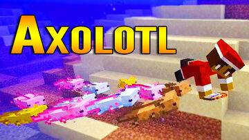 Minecraft 1.17 Snapshot 20w51a Swimming with Axolotl Minecraft Blog