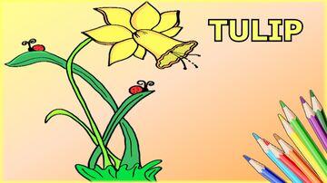 How to Draw Tulip Flower Minecraft Blog
