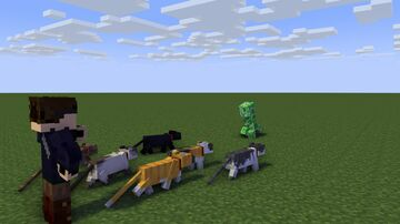 NOT THE CATS!!! Minecraft Blog