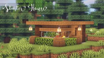 Minecraft Survival | Building the Starter House | Gameplay #01 Minecraft Blog