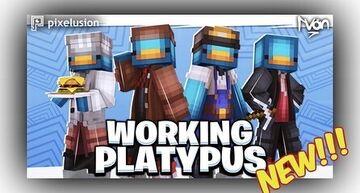 ⛏WORKING PLATYPUS Minecraft Blog