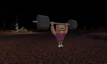 I added cute NPC-characters to my world Minecraft Blog