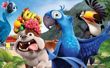 Birds from Rio and Rio 2 in real life blog №1 Minecraft Blog