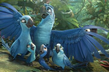 Birds from Rio and Rio 2 in real life blog №4 Minecraft Blog