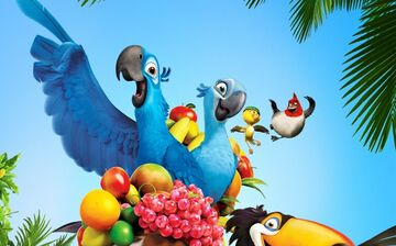 Birds from Rio and Rio 2 in real life blog №2 Minecraft Blog